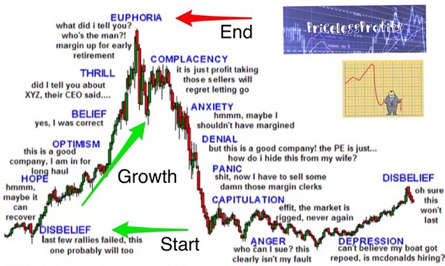What is bull market euphoria?